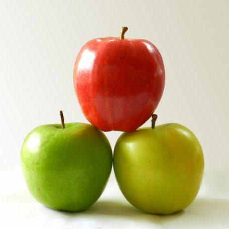 SANEA DIETETICA NUTRICION